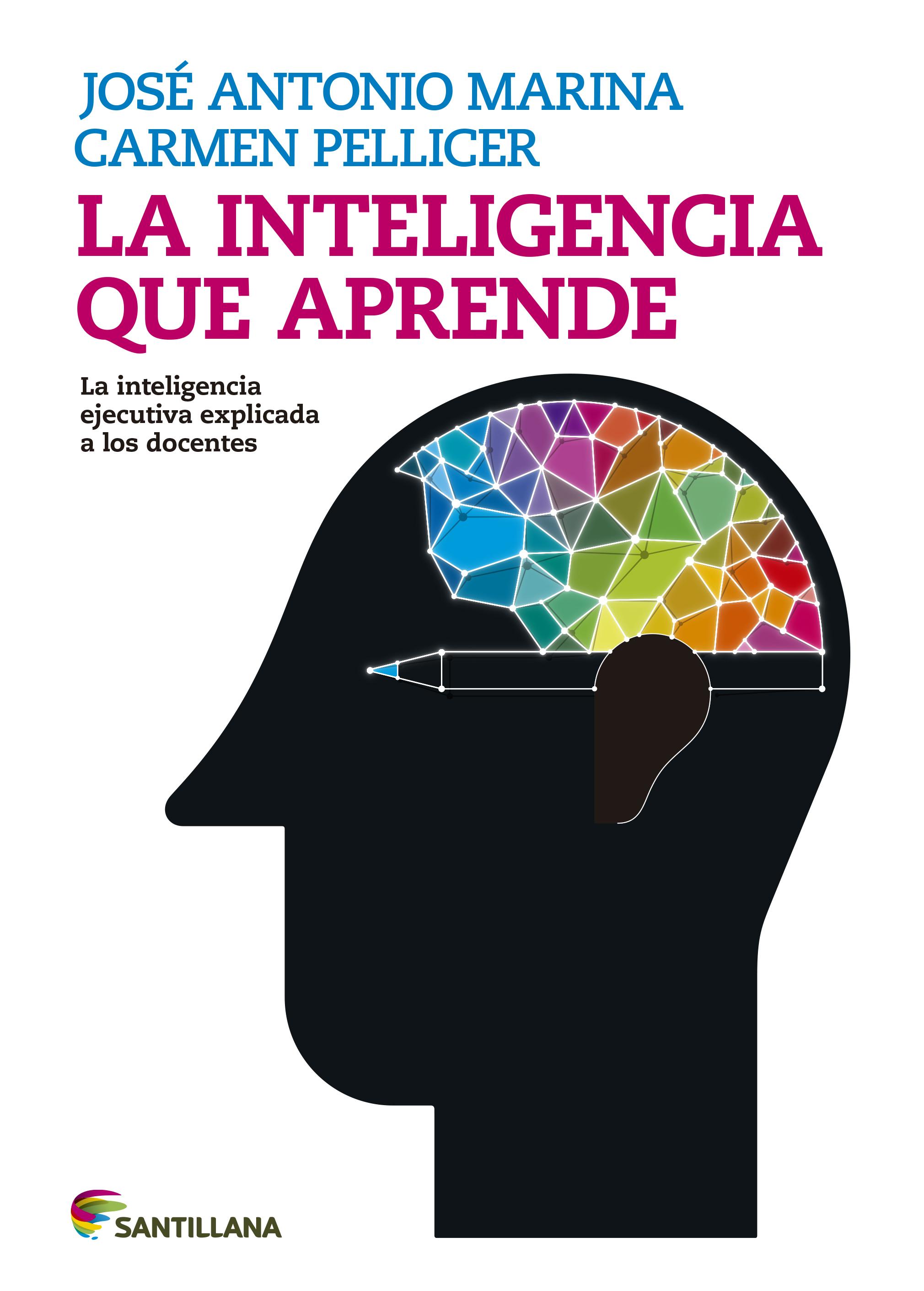 La Inteligencia Ejecutiva o hacia donde se dirigen los pasos de la innovación educativa